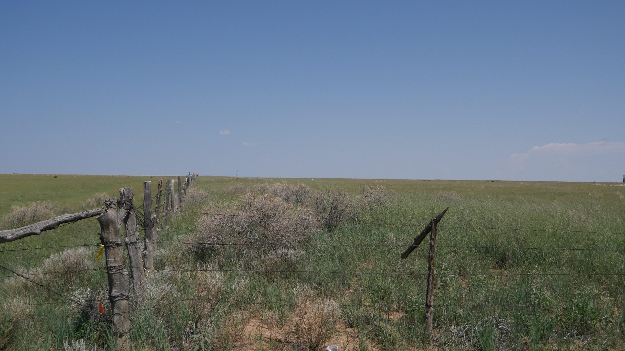 CH029SCE Torrance Co, NM